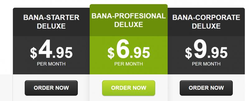 BanaHosting Review precios seoparaempresas 800x326 1 - Mi review y opinión de Banahosting ¿Viable en 2020?