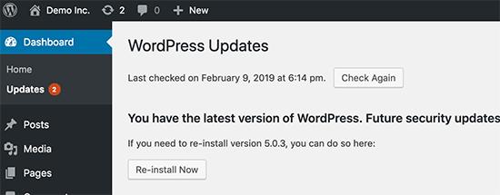 updates - Guía para mejorar el WPO en WordPress [2020]